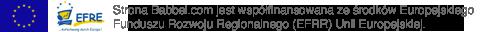 Strona Babbel.com jest współfinansowana ze środków Europejskiego Funduszu Rozwoju Regionalnego (EFRR) Unii Europejskiej.